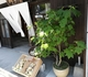 理想の建築旅(佐賀県有田町)!伝統の中にモダンな息吹を感じる陶器の町