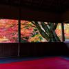【京都】予約不可・1日先着100人限定 ゆったり見られる京都の紅葉の穴場「白龍園」