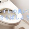 トイレの恒久的な臭いとおさらばする方法