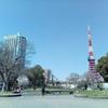 【3か月トライ】桜咲けば、血流もアップ!