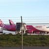 【Peach】台風21号による運航への影響