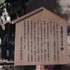 7月16日 豊園泉正寺榊(ほうえんせんしょうじさかき)