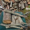 伐木の玉切りやらを 玉切りサイズ置き場へ移動 cross-cutting of the logging