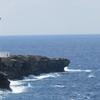 灯台島の悲劇