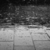 雨のにおいから学ぶ~物事には原因がある~