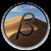 macOS Mojave 10.14.5 Beta 3(18F118d)