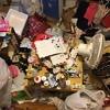 これが庭花の汚部屋だ!