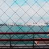 【写真】スナップショット(2017/12/25)海遊館