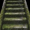 階段でダイエット🐚階段って痩せるの?!