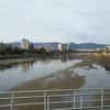 【博多でランチ】Shinshinでラーメンランチ!【ランチパスポート】