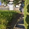 とある路地への階段