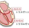 ヘミブロックの心電図とその意義