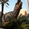 チェーンソーで彫ったティラノサウルスがいる!【兵庫県西宮市】