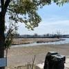 十二町潟水郷公園に行ってみた《春先の氷見さんぽ・その1》
