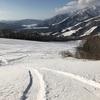 白馬岩岳、 2月19日レポート 残パウ20cm、カービングも快適で最高!