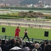 JRA穴馬予想【阪神競馬場全レース予想&阪神牝馬ステークスGⅡ】4月7日(土)