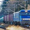 12月28日撮影 中央線 高尾~相模湖間 E257系 211系 EH200の貨物列車など