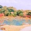 【京都日帰り観光モデルコース】紅葉狩りと京都グルメの旅