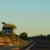 オーストラリアでの運転 小話