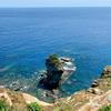 立神岩展望台横の池塘(仮称)(沖縄県与那国島)