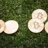 ビットフライヤーでビットコインを購入するために、ランクアップ手続きと入金をしました!