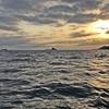 7月のイカメタル・デイゲームを楽しんできました~🎵 【 日本海で狙う、夏の美味しいケンサキイカ🦑 】