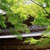 2020年5月19日(火)の出来事 #オンライン授業 #居場所 #町家 #八幡堀