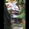 逗子の鷹取山までハイキングをしにいきました!