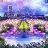 横浜の観光スポット「山下公園」で初イルミネーション開催!