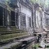 カンボジア旅行記⑨トゥクトゥクに乗って~ベンメリア編~小さな違法ガイドにカモられる