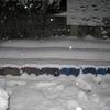 【出来事】積雪!!