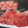 「寿司の王様」こんな「大トロ」(本マグロ)。市価の1/5でお出しできます。ハズさない食事!「熱海」で贅沢/おいしい/安価/感謝