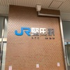 【琵琶湖一周徒歩の旅 その2❣️インスタ映え確定❣️琵琶湖を背景に1月から2月が見頃の菜の花を撮る❣️ JR堅田〜JR近江八幡】
