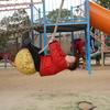 名谷あじさい公園で遊んで、王子動物園行って、夕方メリケンパークで遊んだお正月休み最終日