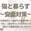 猫と暮らす〜安全対策篇〜
