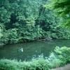 亀かつぎ池(岡山県奈義)