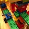 カナヘビ(1ヶ月)、レゴ迷路で遊びひっくり返されて仮死状態に