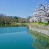 姿の池(埼玉県秩父)