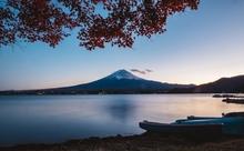 日本語教育推進法が成立。日本語教育学会が語った、これからのこと