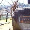 長野県、臥竜公園&須坂市動物園を散策!