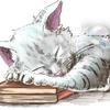 Twitterとブログのヘッダーを描いてもらいました!【ココナラ 使ってみた】【はるさんの魅力!】