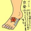 膀胱経(BL)64 京骨(けいこつ)