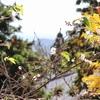 山のお寺。石垣の小径を歩く