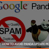 How to Avoid Panda update penalty on your website?