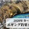 【熊本天草】2020年 冬~春エギング釣果まとめ