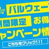 ♪お得な春のキャンペーン♪〜沖縄ダイビングライセンス・ファンダイビング〜