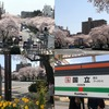 タニワキ日記(4月8日)