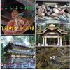 日本の伝統芸術最高峰「東照宮」『鳴き龍』/「いろは坂」から『中禅寺湖』 🐉