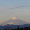 「見たことがない」「富士山」の冠雪具合。