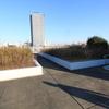 12月20日(日)晴れのち曇り えこっくる江東「望遠鏡工作と観望会」